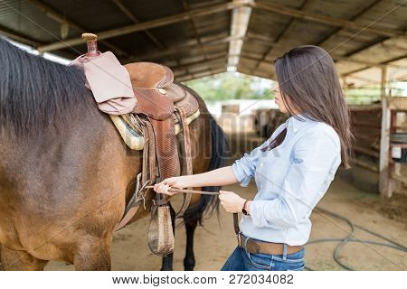 Cowgirl Tacking Up Horse By Pulling On Cinch Strap To Tighten The Saddle At Stable