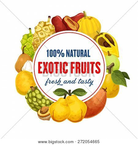 Fruit From Exotic Countries Round Icon. Red Pear And Santol, Loquat And Guava, Quince And Mango, Lon