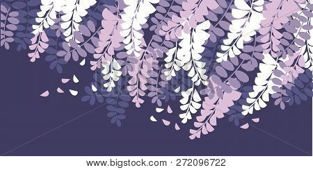 Spring Acacia Blossom Color Vector Illustration. Wisteria Flowers Vintage Texture With Text Space. V