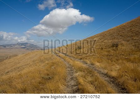 Road in mountains pasture in nice day poster