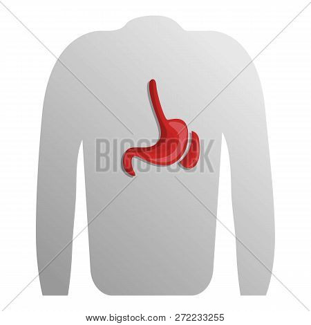 Human Spleen Icon. Cartoon Of Human Spleen Vector Icon For Web Design Isolated On White Background