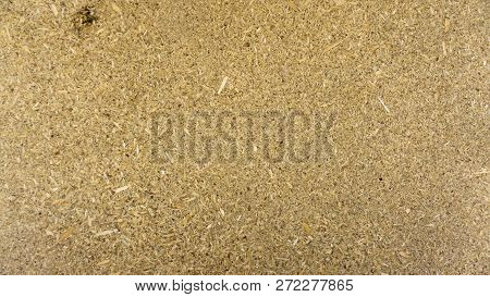 Stock Macro Photo Of The Texture Of Wood.
