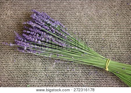Bouquet Of Lavender Flowers, On A Tan Textured Background