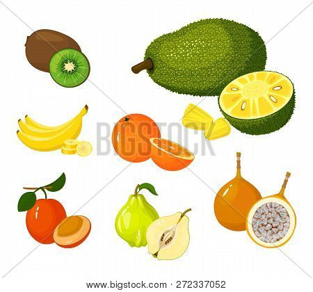 Tropical Exotic Fruits Set Isolated On White Background. Half And Whole Of Juicy Fruits. Cartoon Fla