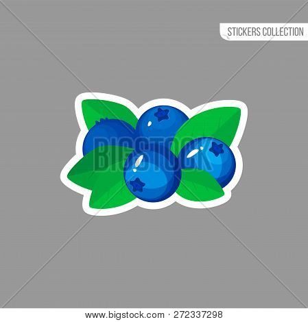 Blueberry Sticker Isolated On White Background. Bright Vector Illustration Of Colorful Half And Whol