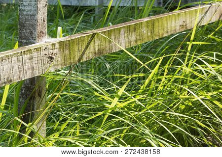 Garden Or Farm Fence With Morning Light