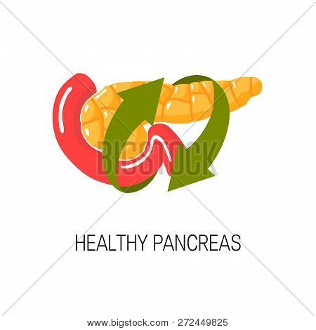 Healthy Pancreas Concept. Medical Vector Illustration Of Pancreas, Duodenum And Arrows Symbolizing H