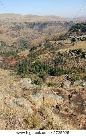 Bushy Mountain