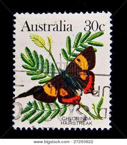 AUSTRALIA - CIRCA 1980s: A stamp printed in Australia shows butterfly Chlorinda Hairstreak - Pseudalmenus chlorinda, circa 1980s