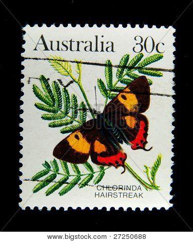 AUSTRALIA - CIRCA 1980s: A stamp printed in Australia shows butterfly Chlorinda Hairstreak, circa 1980s