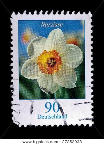 GERMANY - CIRCA 2010: a 2 Euro stamp from Germany shows image of a narcissus, circa 2010