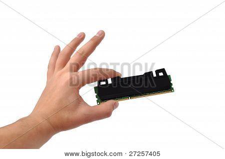 Ram In Hand