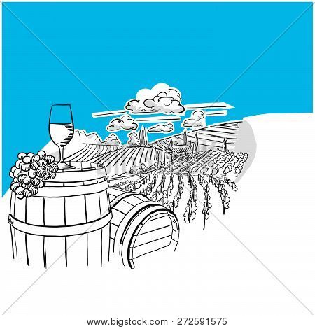 Vineyard Landscape With Glass Drawing, Hand-drawn Vector Food Illustration For Vine Label And Social