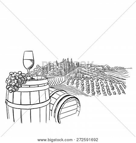 Vineyard Landscape With Glass Illustration, Hand-drawn Vector Food Illustration For Vine Label And S