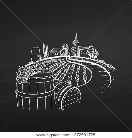 Vineyard Drawing On Chalkboard, Hand-drawn Vector Food Illustration For Vine Label And Social Media