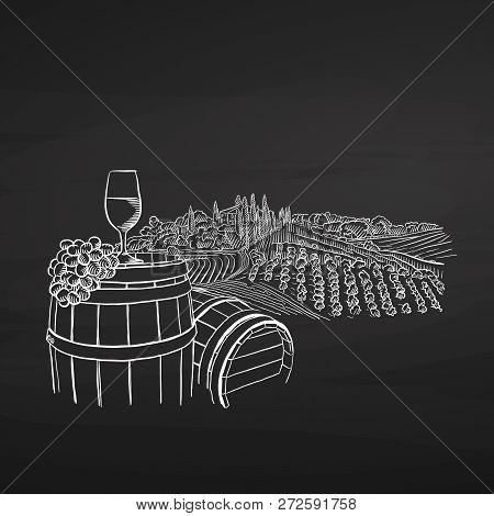 Wine Illustration On Chalkboard, Hand-drawn Vector Food Illustration For Vine Label And Social Media