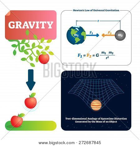 Gravity Vector Illustration. Explained Natural Force To Objects With Mass. Basics Of Universe Physic