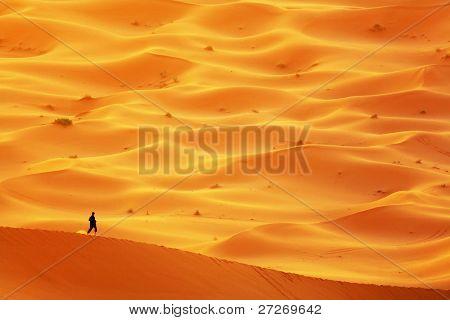 Lost in Sahara Desert