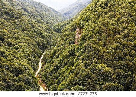Valley in National Park Retezat, Romania