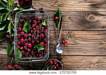 Cherry Basket. Cherry Tree Branch. Fresh Ripe Cherries. Sweet Cherries In Garden.
