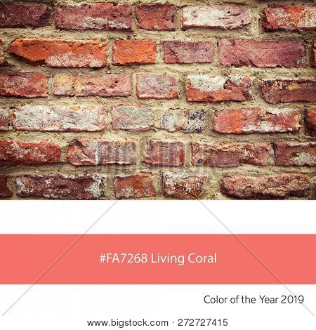 An old brick wall as an example of the trend colour of the year 2019, Living Coral, with corresponding colour hex.