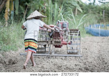 Child Labor, Poor Children Driving A Plow Farming Area, Children Have To Work Because Of Poverty, Ag