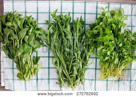 Fresh Washed Beams Of Fragrant Herbs - Mint, Cilantro, Tarragon On A Clean Kitchen Towel, Top View