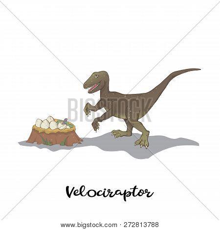 Velociraptor With Nest Dinosaur Eggs Isolated Vector