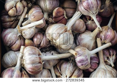 Fresh Garlic On A Black Stone Surface, Top View, Copy Space, Free Space For Text.