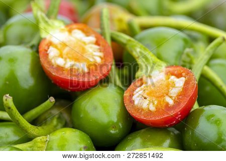 Cherry Peppers With Half-cut Red With Green. Scinentific Name Is (capsicum Frutescens. Linn.)