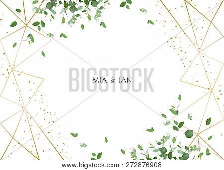 Herbal Minimalistic Horizontal Vector Frame.hand Painted Plants, Branches, Leaves On White Backgroun
