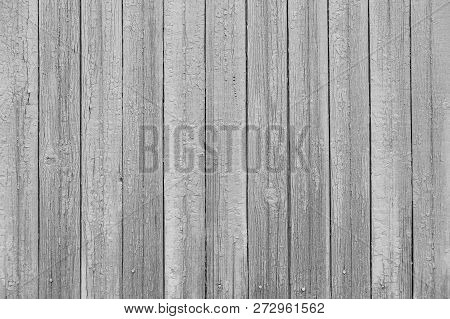 Old Painted Boards For Use As Background. Old Vintage Medium Gray Wooden Planks Background. Wood Tex