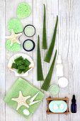 Aloe vera skincare including plant stems, moisturiser, facial cream, exfoliating scrub and salt, essential oil bottle. Health concept beneficial also for sunburn, psoriasis, eczema and acne. Top view. poster