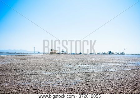 Landscape Of Rice Fields Near The Lagoon Of Valencia, Spain. Freshly Planted Rice Fields.