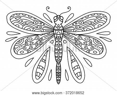 Vector Coloring Book With Dragonfly Line Art Black And White Illustration. Insect With Wings And Sma