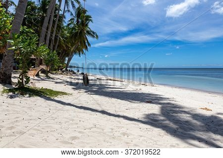 White Sandy Beach With Palm Trees And A Hammock On An Island Philippines