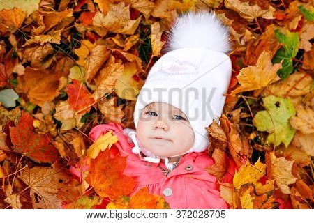 Adorable Little Baby Girl In Autumn Park On Cold October Day With Oak And Maple Leaf. Fall Foliage.
