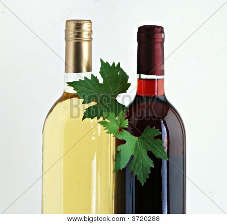 Bottles Of Red And White Wines