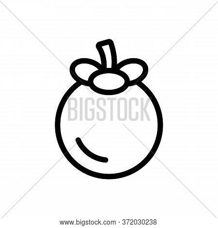 Mangosteen Ripe Citrus Fruit Icon Vector. Mangosteen Ripe Citrus Fruit Sign. Isolated Contour Symbol