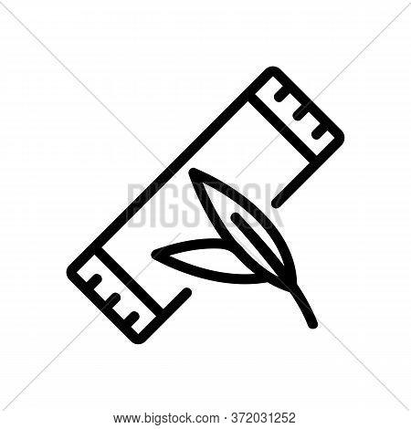 Eucalyptus Bubble Gum Package Icon Vector. Eucalyptus Bubble Gum Package Sign. Isolated Contour Symb