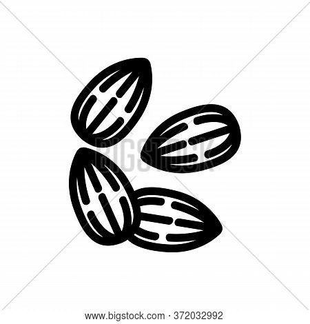 Almond Nuts Icon Vector. Almond Nuts Sign. Isolated Contour Symbol Illustration