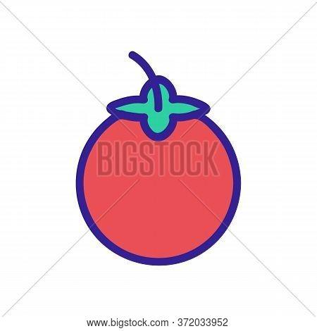 Mangosteen Tropical Fruit Icon Vector. Mangosteen Tropical Fruit Sign. Color Symbol Illustration