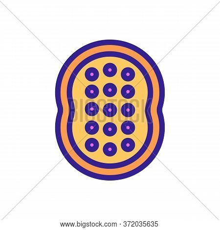 Anti Cellulite Massager Tool Icon Vector. Anti Cellulite Massager Tool Sign. Color Symbol Illustrati