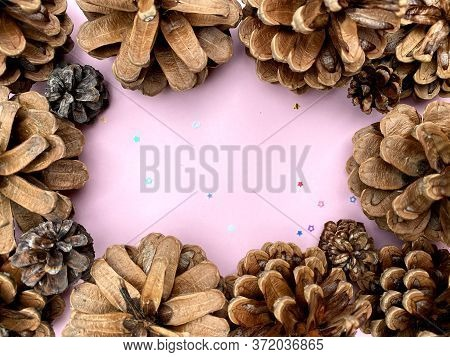 Stylish Background With Pine Cones On Pink Copy Space For Text. Seasonal Holidays Concept