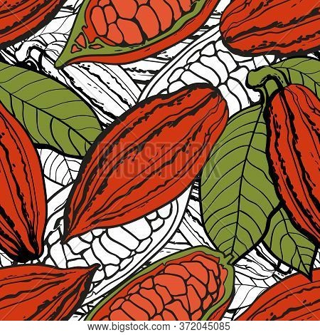 Seamless Pattern And Background Of Chocolate Brown Cocoa Beans In Pods And With Seeds.