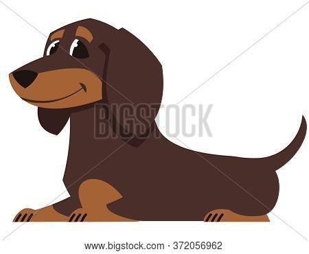 Lying Dachshund Dog. Cute Pet In Cartoon Style.