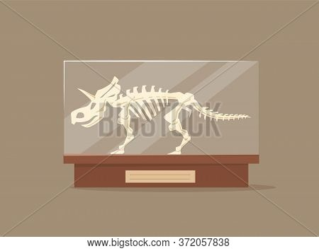 Triceratops In Glass Showcase Cartoon Vector Illustration. Museum Of Paleontology Exhibit. Dinosaur