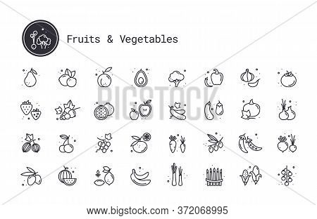 Vegetables, Fruits, Berries Thin Line Vector Icons. Fruit Orchard, Farm Harvest, Growing Fruit And V