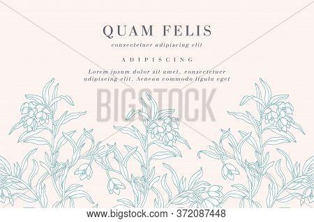 Vintage Card With Forget Me Not Flowers. Floral Wreath. Flower Frame For Flowershop With Label Desig