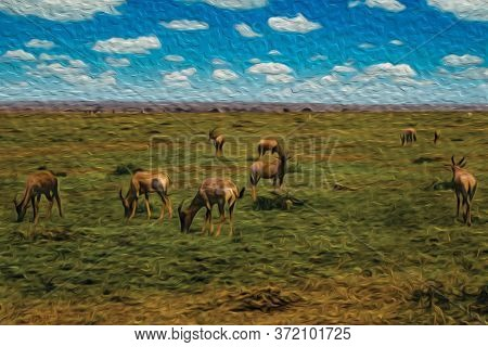Herd Of Gazelles Grazing On Green Pasture In The Flat Landscape Of Serengeti National Park. A Conser